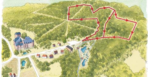 Parcours forestier de la petite suisse d'Élincourt
